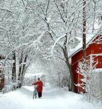 Inverno-Finlandia-200x214